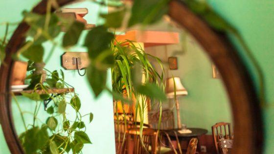 Distrito Francés - Le boudoir mexicain 4